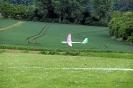 Flug-Modelle